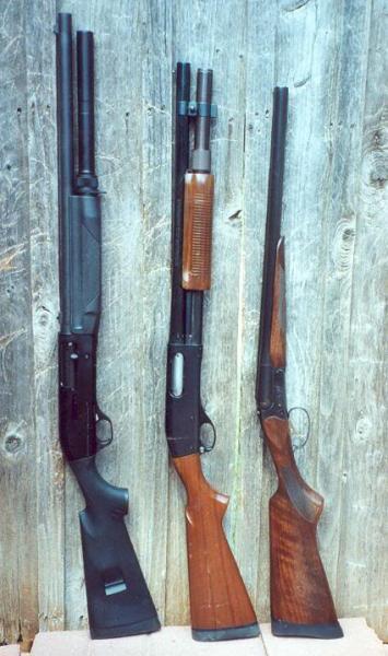 Name:  shotguns.jpg Views: 790 Size:  42.6 KB