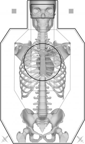 Name:  FAST Silhouette (Anatomy) - Full.jpg Views: 3738 Size:  29.3 KB